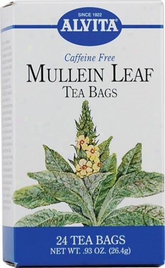 Alvita Tea's Mullein Leaf Tea 24bags