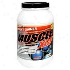 Ast Muscle Xgf 2.4lb Vanilla
