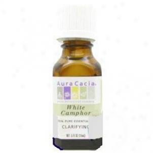 Aura Caccia's Essential Oil Camphor .5oz