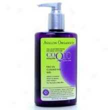 Avalon Organic's Co-q-10 Facial Cleansint Gel 8.5oz