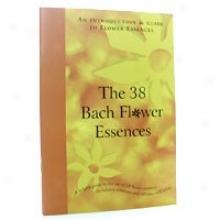 Bach's Bfe Family Main division 1ea