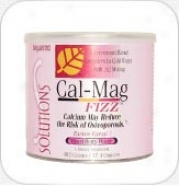 Baywood's Cal-mag Fizz Mix Bery 492gm