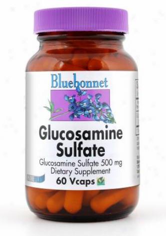 Bluebonnet's Gluscosamine Sulfate 500 Mg  60caps
