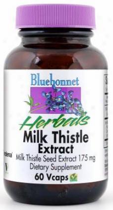 Bluebonnet's Milk Thistle Extract 60aps