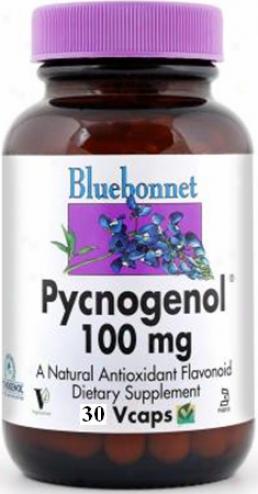 Bluebonnet's Pycnogenol  100 Mg 30vcaps