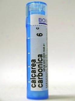 Boiron's - Calcarea Carbonica 6c 80 Plts