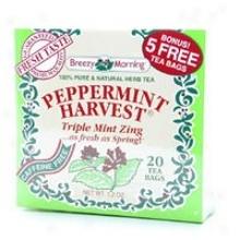 Breezy Morning Tea's Peppermint Harvest Tea 20bags