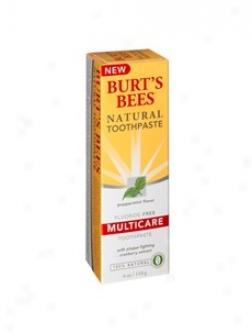 Burt's Bees Multicare Toothpaste Fluoride-free 4oz