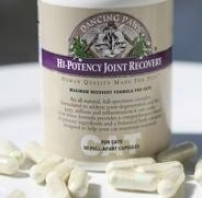 Dancing Paws Feline Hi Potency Joint Recovery 90tabs