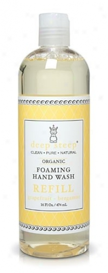 Deep Steep's Grapefruit Bergamot Foaming Handwash Refill 16oz