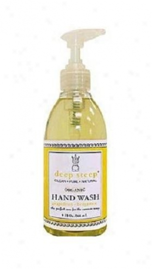 Deep Steep's Grapefruit Bergamot Organic Handwash 9oz