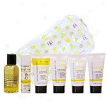 Deep Steep's Grapefruit Bergamot Sampler Set 6pcs