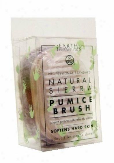 Earth Therapeutics Natural Pumice Brush