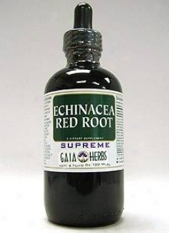 Gaia Herb's Echinacea Red Root Supreme 4oz
