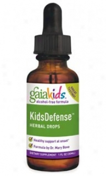 Gaia's Kids Kidsdefenseã¿â¿â¾ Herbal Drops 1 Fl Oz