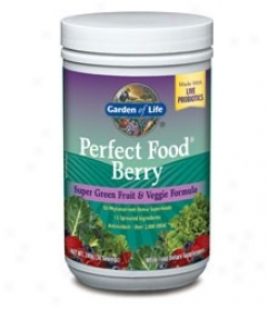 Garden Of Life's Perfect Feed Berry 240gm