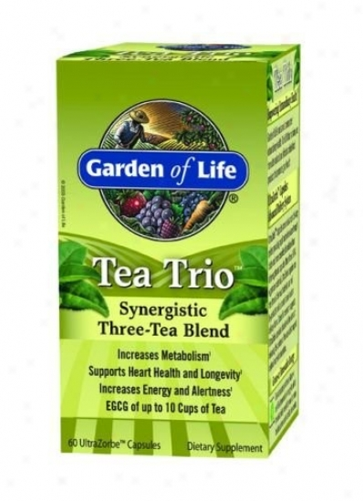 Garden Of Life's Tea Trio 60caps