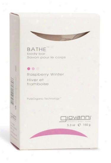 Giovanni's Bathe Bar Soap Raspberry Winter 5.3oz