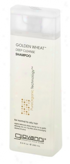 Giovanni's Shampoo Gold Wheat ( Nirmal To Dry )  8oz