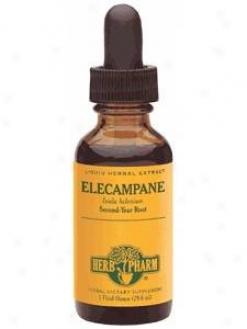 Herb Pharm's Elecampane 1oz
