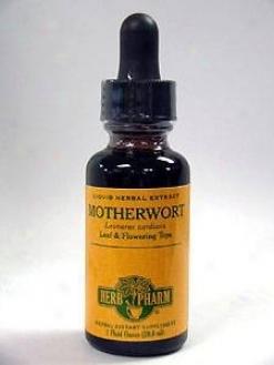 Herb Pharm's Motherwort/leonurus Cardiaca 1 Oz