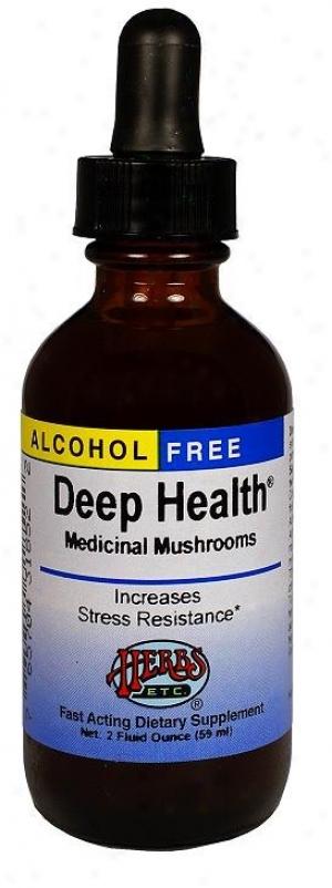 Herbs Etc Alcohol Free Deep Health Daily Multi-herbal 2oz