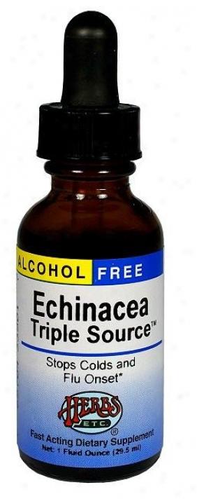 Herbs Etc Echinacea Triple Source 1oz Alcohol Free