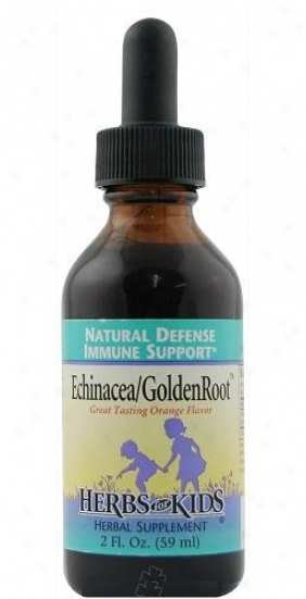 Herbs For Kids Echinacea/goldenroot Orange Liquid 2 Fl Oz