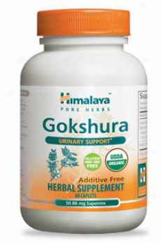 Himalaya Herbal's Gokshura 60 Caps