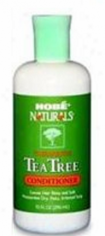 Hobe Labs Conditioner Naturals Infusion  Tree 10oz