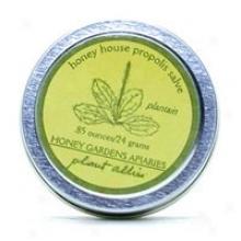 Honey Gardens Apiariss Apitherapy Hlney House Healing Salve 0.85 Oz
