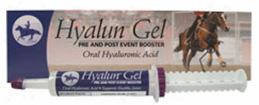 Hyalogic's Hyalun Gel Oral Hyaluronic Acid For (horses) 1oz