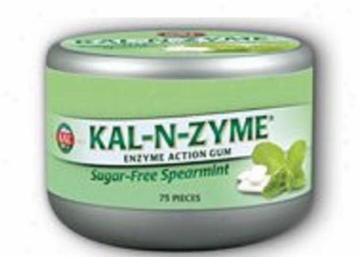 Kal's Kal-n-zyme Gum 75pcs