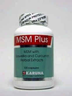 Karuna Corporation's Msm Plus 120 Caps