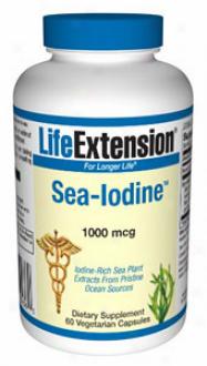 Life Extension's Sea-iodine 100Omcg 60vvcaps