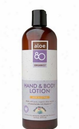 Lily Of The Desert's Aloe 80 Organics Citrus Hand & Body Lottion 16oz