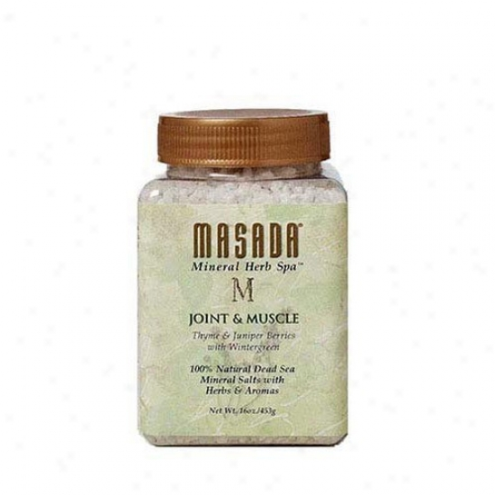 Masada's Herb Spaã¿â¿â¾ Joint & Muscle Whole Organic Salts 16oz