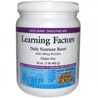 Natural Factors Learning Factors Daily Nutrient Boost Mix 16oz 30% Off