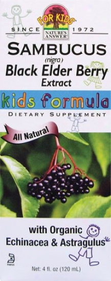 Nature's Answer's Sambucus Kids Formula 4 Fl Oz