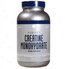 Natures Best Perfect Creatine Powder 500g + 150g Unconstrained