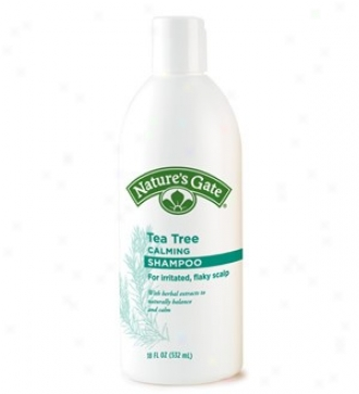 Nature's Gate's Shampoo Tea Tree Rainwater 18oz