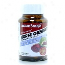 Natture's Herbs Horse Chestnut Stndrd Extract 60caps