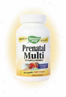 Nature's Way's Prenatal Complete 180caps