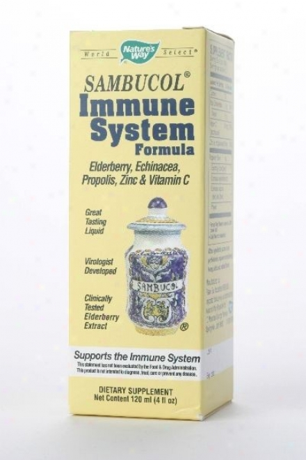 Nature's Way's Sambucus Immune Syrup 4oz