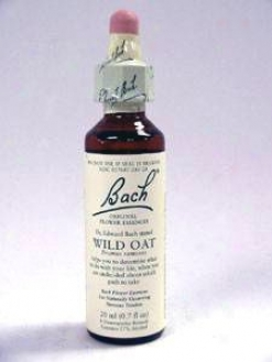 Nelson Bach's Wild Oat Flower Essence 20 Ml