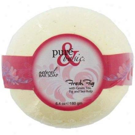 Pure&basic's Soap Rod Green Tea Fresh Fig 6.4oz