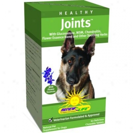 Renew Life's Healthy Joints Chewable For Dogs 60tabs