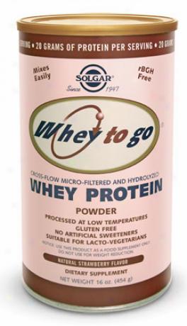 Solgar Whey To Go Protein Powder Strawberry Flavor 16oz