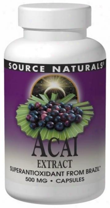 Source Naturals Acai Extract 500 Mg 120 Caps