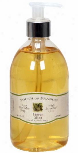 South Of France's Liquid Soap Lemon/mint 16.9oz